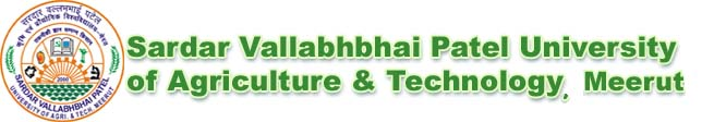 sardar vallabhbhai patel university recruitment